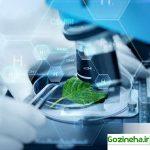 ورود فناوریهای تازه به حوزه کشاورزی با رویکرد اشتغال زایی
